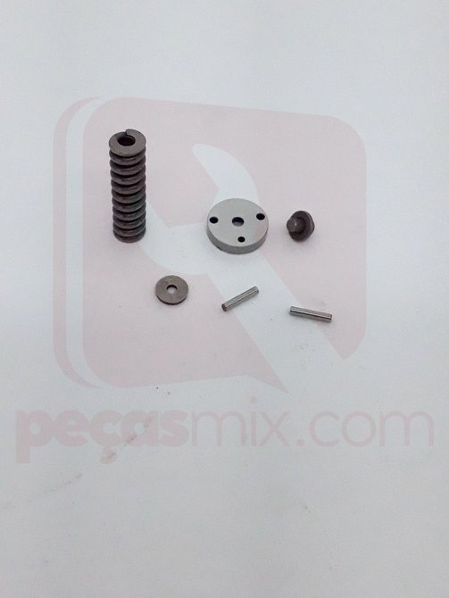 Kit reparo injetor Motor BD 5.0/7.0/10.0 - 19801610